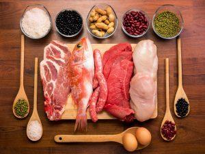 protein-geonutrition